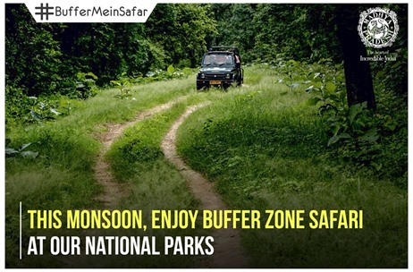 MP Tourism's #BufferMeinSafar Woos Tourists to National Parks in the Monsoon