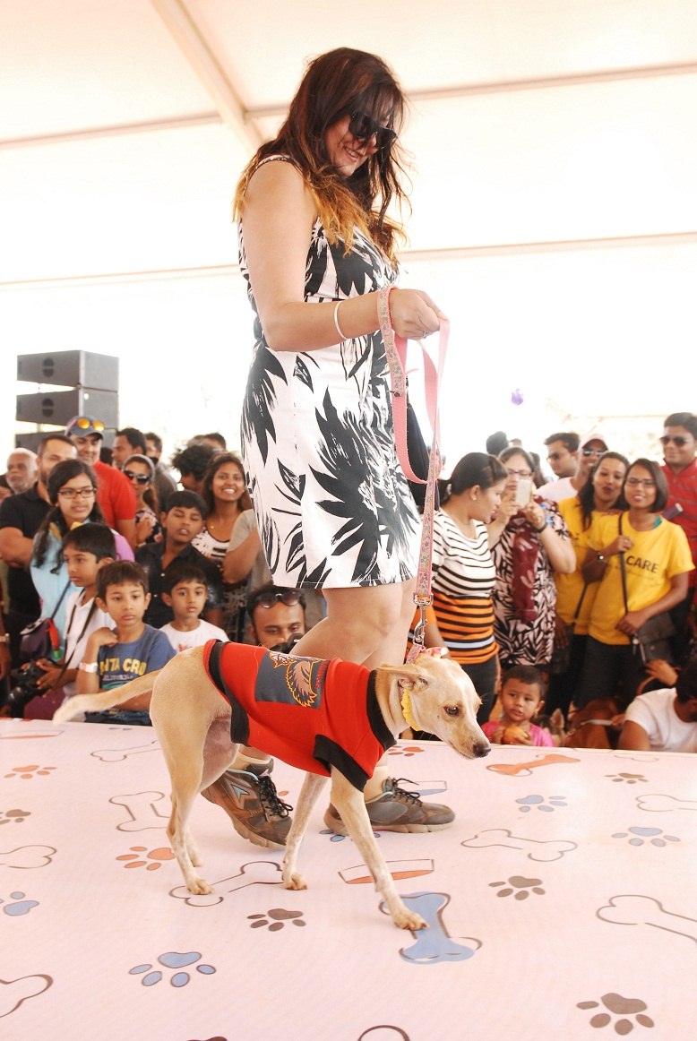 Embassy Group Organises Happy Dog Carnival 2017 in Bangalore