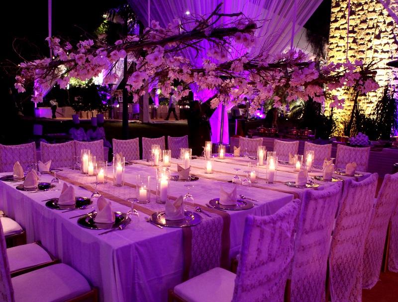 Fine garden of eden wedding theme composition wedding dress garden of eden wedding theme image collections wedding decoration junglespirit Images